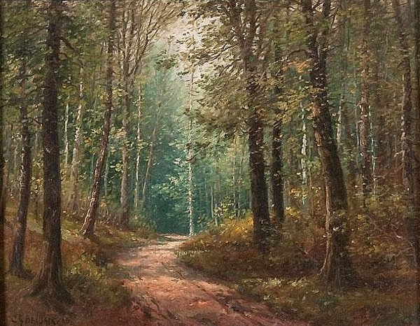 A Sunlit Path Through The Forest