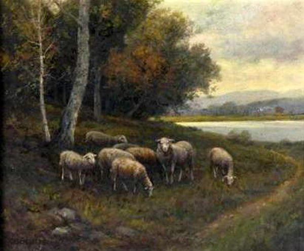Autumn Landscape With Sheep