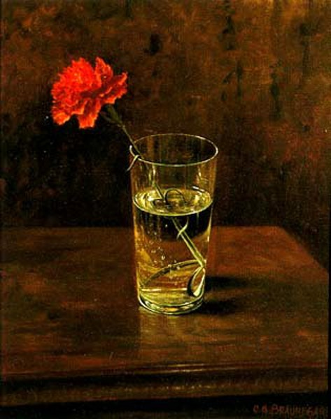 Red Carnation In A Glass Of Water
