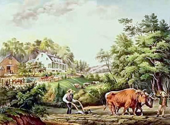 American Farm Scenes