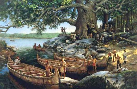 cottonwood-tree