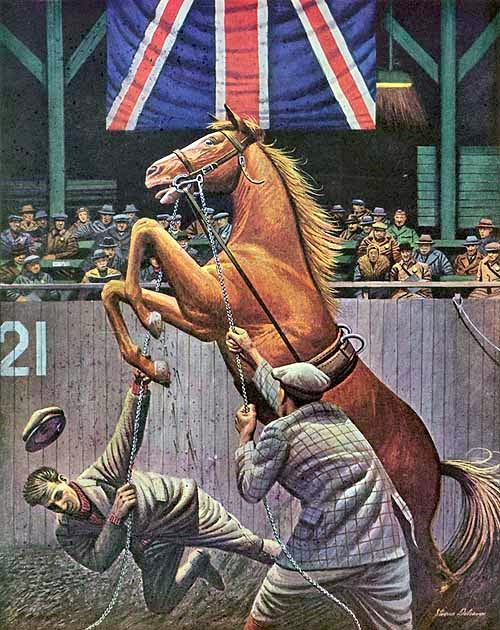 saturday-evening-post-cover-horse