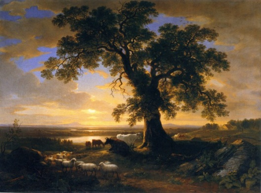 The Solitary Oak - The Old Oak