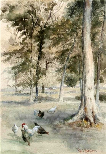 Chickens And Trees