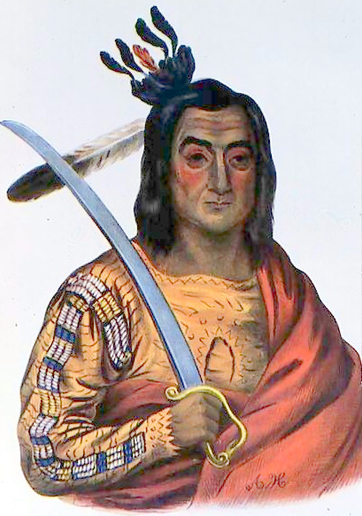 Mou-Ka-Ush-Ka-Or, A Yankton Sioux Chief