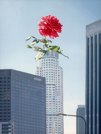 A Rose Among Thorns (Downtown Los Angeles)