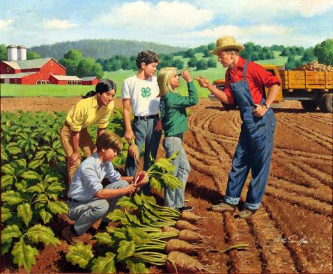 Farmer Instructing 4H Class