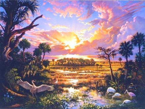 Everglades Painting