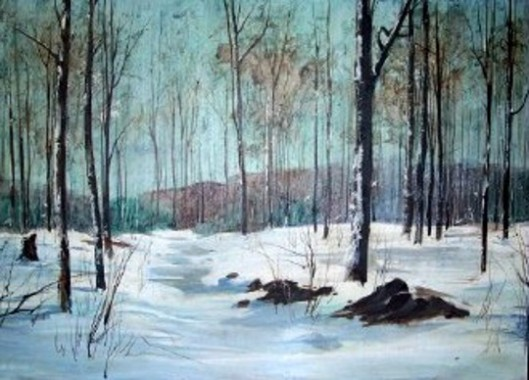 Melting Snow - Winter Forest