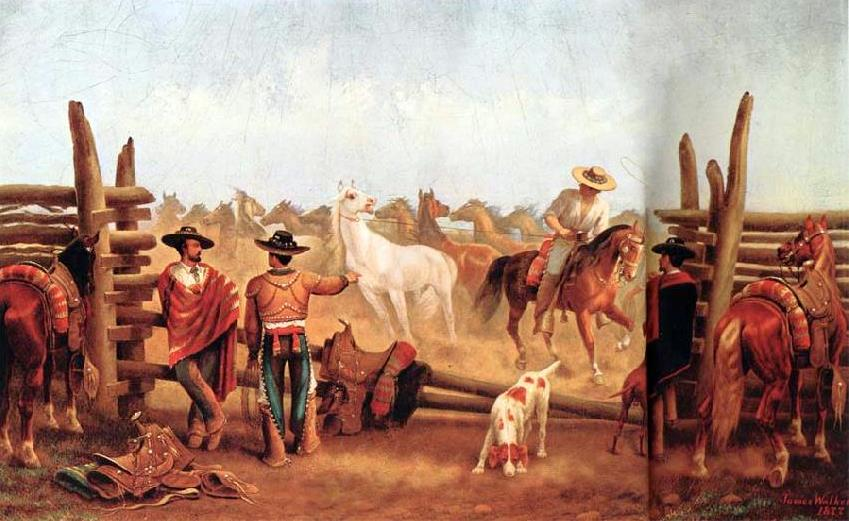 Vaqueros Roping Horses In A Corral
