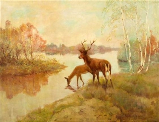 Deer Drinking At Stream