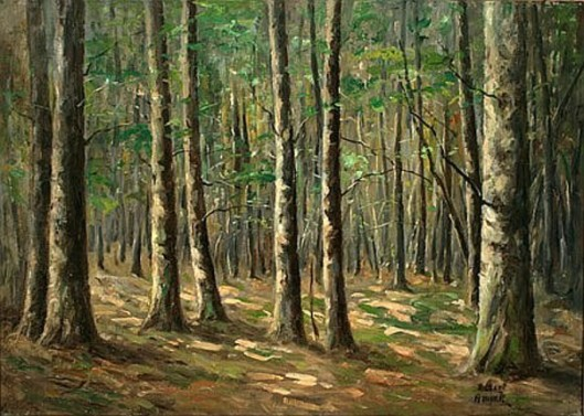 The Timber Woods
