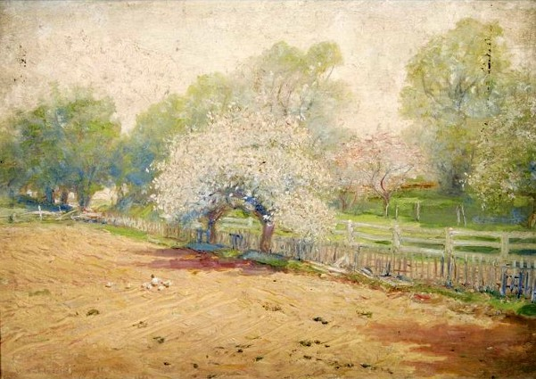 The Young, The Rosy Spring