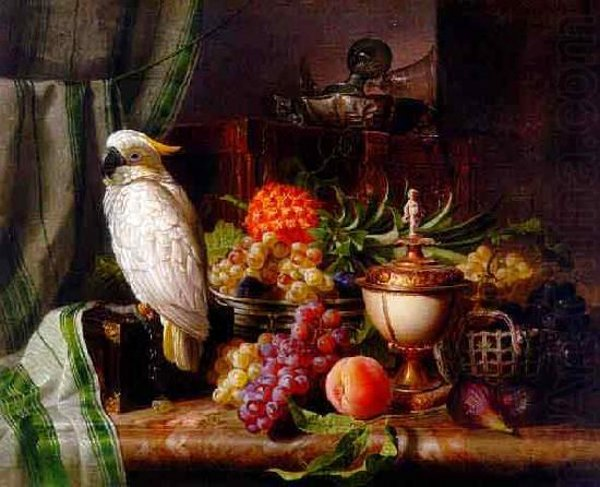 Still Life With Cockatoo
