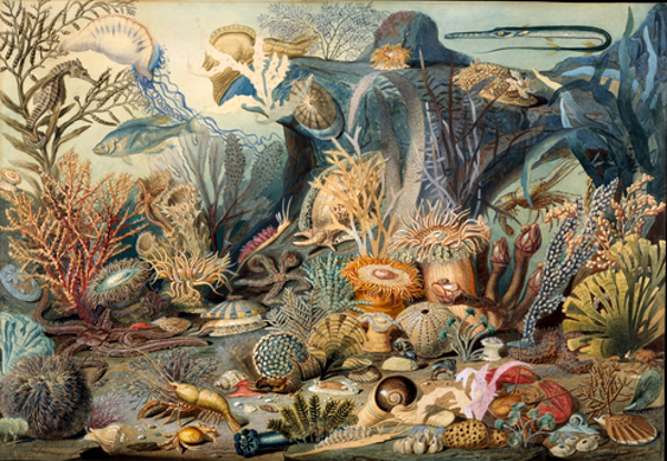 Christian Schussele 1824 1879 171 American Gallery