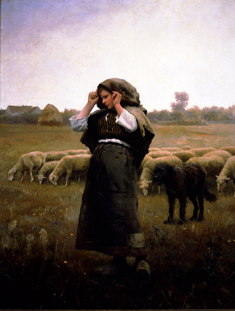 Shepherdess And Her Flock
