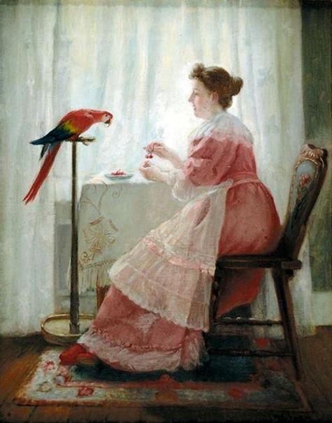 Feeding Parrot