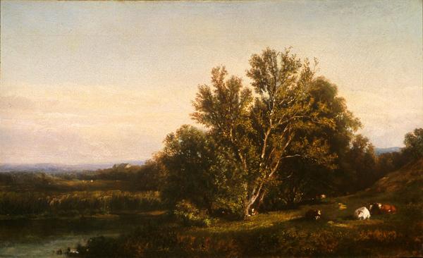 Landscape Near Cranbrook