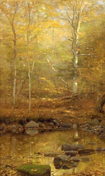 A Quiet Pond