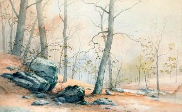 Autumn Forest Stream Landscape