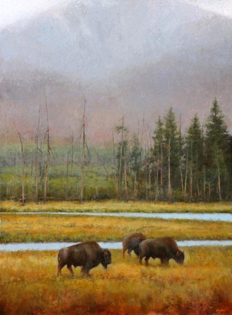 Along The Madison - Yellowstone Bison