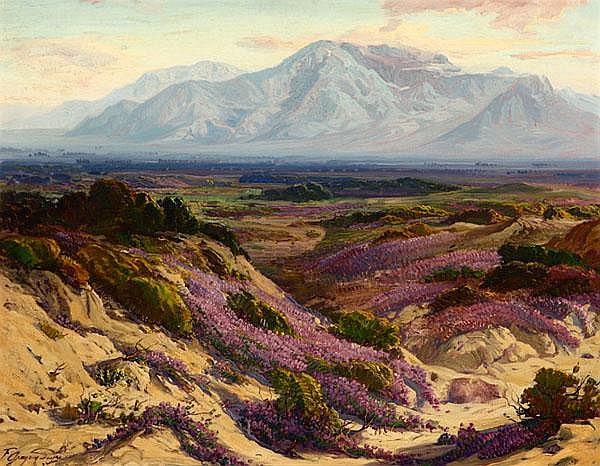 Blooming Verbena In The Desert And Mt. San Jacinto