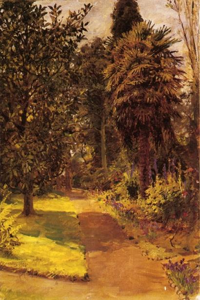 A Sunlit Garden Path