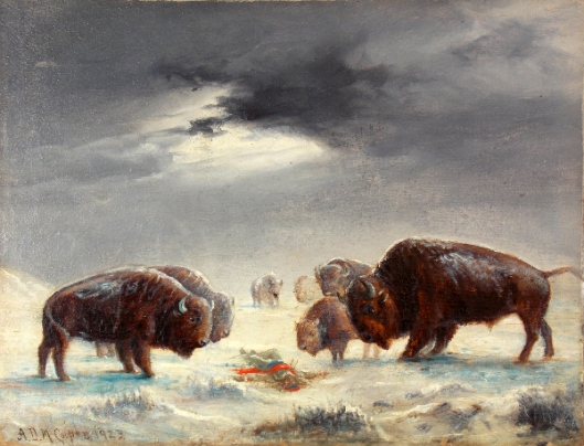 Buffalo Inquest (courtesy of Mr. Edward Peterson)