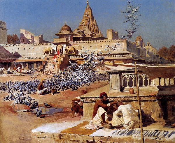 Feeding The Sacred Pigeons, Jaipur