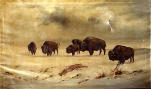 Landscape With Buffalo And Native Indian