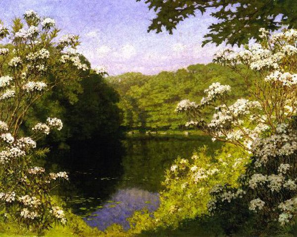 Lily Pond, Matunuck, Rhode Island