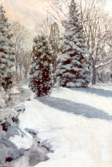 Snow Scene, Fox Meadow