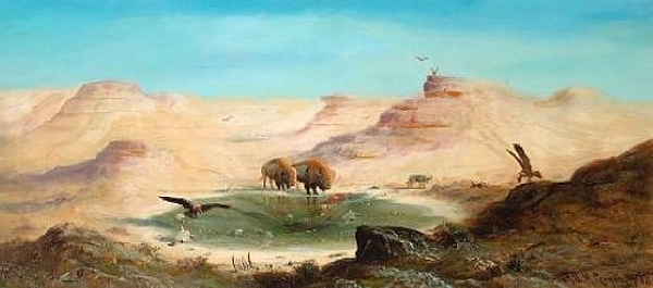 The Last Of The Buffalo
